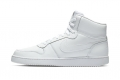 Кроссовки Nike Ebernon Mid AQ1773-100